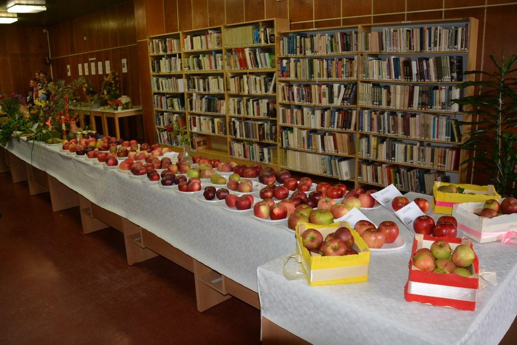 Najkrajšie jablko 2018 (výstava)